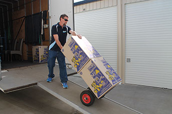 Removalist wheeling boxes down truck ramp